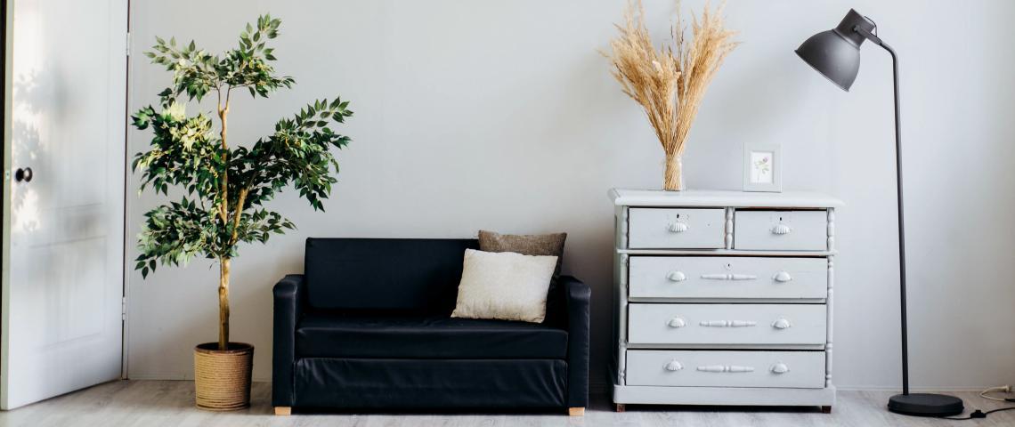 En bild på en grön växt, en svart soffa, en vit byrå och en svart golvlampa.